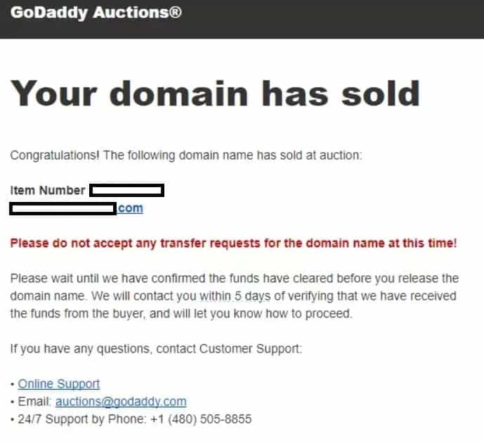 godaddy auctions selling a domain