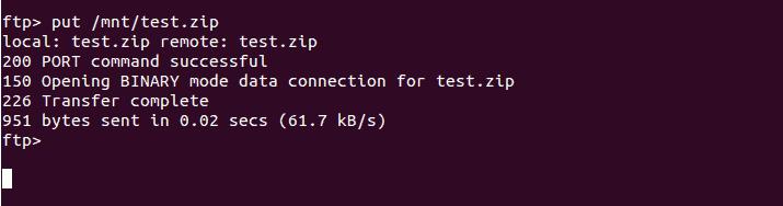 Put Test Zip