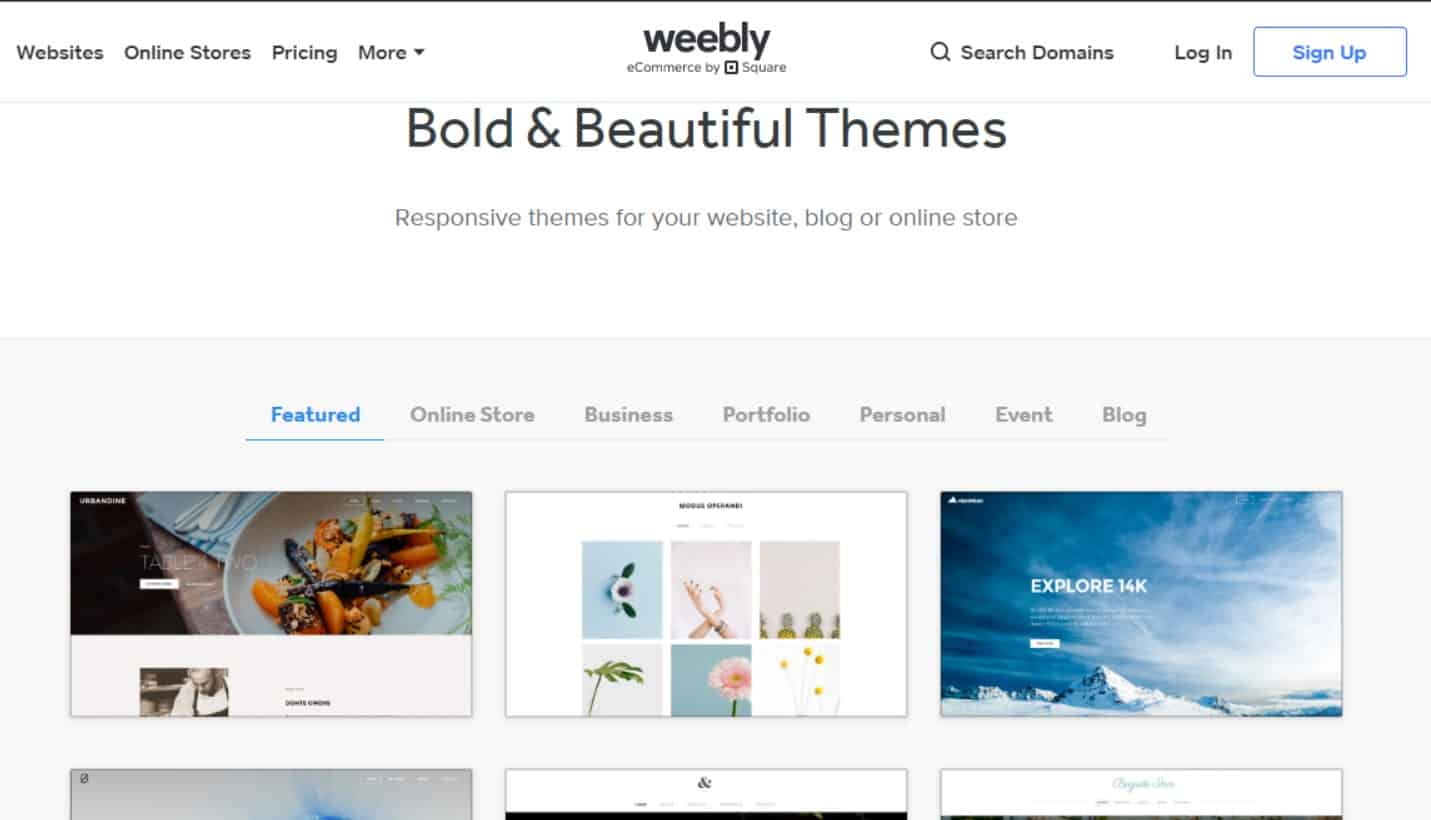 bold beautiful theme