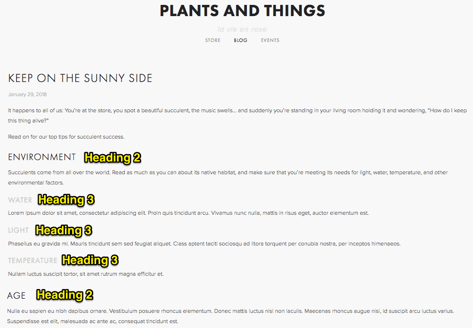 Plants and Things