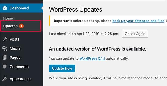 wordpress updates check
