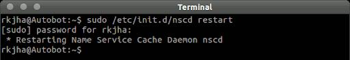linux dns cache clear