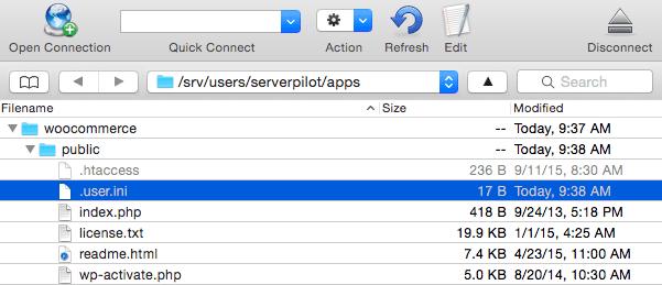 The user.ini File